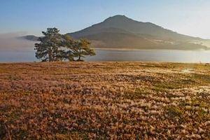 Công bố quy hoạch phát triển Khu du lịch quốc gia Đankia-Suối Vàng