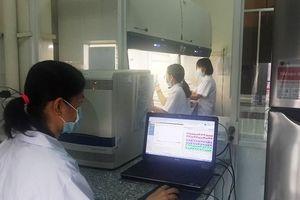 8 phòng thí nghiệm khẩn cấp 'truy tìm' virus dịch tả heo châu Phi
