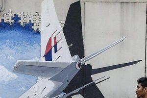 MH370: Manh mối từ 'hình rồng' nông dân nhìn thấy trong rừng Campuchia