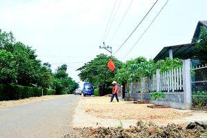 Hiệu quả xây dựng nông thôn mới ở Quảng Trị