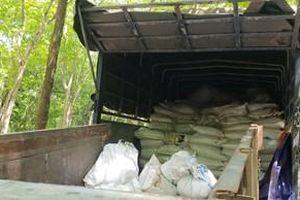 Phát hiện xe tải đổ trộm khoảng 100 tấn bùn thải nhiều lần trong vườn cao su