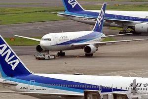Phi công uống rượu, một hãng hàng không Nhật Bản hoãn chuyến bay