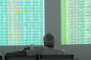 Nhà đầu tư nước ngoài quan tâm chứng chỉ quỹ nội