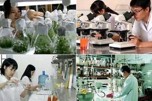 Hàng loạt chính sách ưu đãi cho doanh nghiệp khoa học và công nghệ