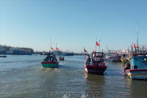 Phát triển kinh tế biển ở Bà Rịa - Vũng Tàu - Bài 1: Thực trạng quản lý đất đai về cảng biển