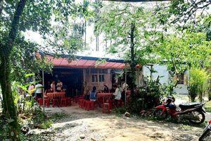 Quảng Nam: Chủ tịch Hội Chữ thập đỏ bị ong đốt tử vong