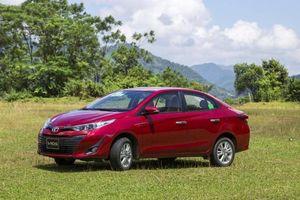 Mỗi ngày Toyota bán ra gần 70 chiếc xe Vios