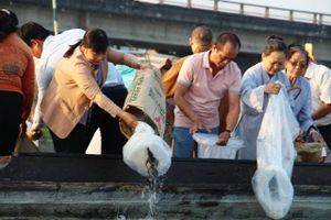 Thả cá tái tạo nguồn lợi thủy sản