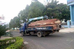 Một chiến sĩ công an tử vong khi trông coi gỗ lậu của 'ông trùm' Phượng 'râu'