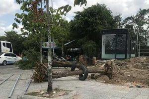 Cà Mau: Cưỡng chế công trình trái phép, cưỡng chế luôn cây xanh