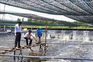 Phát triển nông nghiệp công nghệ cao - Bài 2: Gia tăng giá trị ngành nông nghiệp