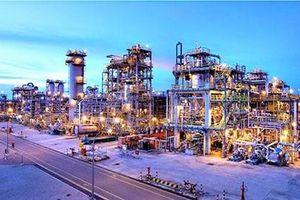 Tập trung cùng lúc 400 nhà thầu thi công Tổ hợp Hóa dầu miền Nam