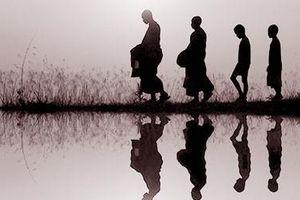 Tại sao đức Phật vô giới tính?