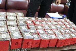 Tạm giữ lô hàng 10.000 điếu xì gà vận chuyển qua đường hàng không