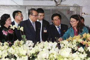 Đoàn đại biểu lãnh đạo Đảng Lao động Triều Tiên tham quan mô hình trồng lan ở Hợp tác xã Đan Hoài