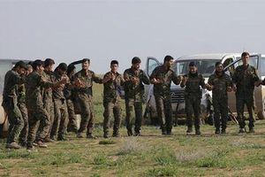 Thủ lĩnh SDF 'thề' tiêu diệt toàn bộ IS ở Đông Syria trong 7 ngày