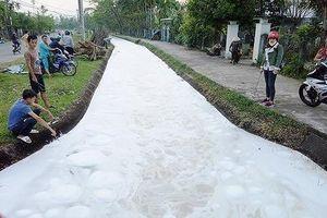Vụ cá chết trắng kênh thủy lợi: Một người dân nhận đổ hóa chất xuống kênh