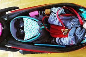Lật tẩy 'bí mật' trong cốp xe hotgirl chủ hàng túi xách