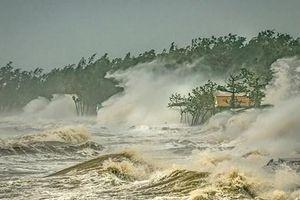 Việt Nam đạt giải nhất cuộc thi ảnh về thời tiết và khí hậu