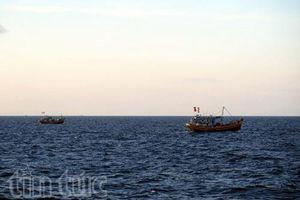 Khẩn trương tìm kiếm ngư dân mất tích và hỗ trợ cứu hộ các tàu vào bờ an toàn