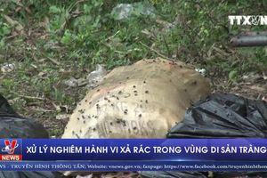 Xử lý nghiêm hành vi xả rác trong vùng Di sản Tràng An