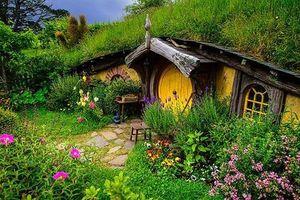 10 ngôi nhà trong rừng đẹp như mộng, ai cũng khao khát sở hữu