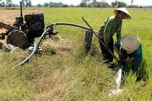 Tây Nguyên và Nam Bộ đối mặt nguy cơ thiếu nước