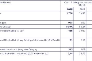 Doanh thu năm 2018 của China Dongxiang (Group) tăng 17,3% so với năm 2017