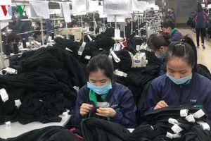 Cần nuôi dưỡng và phát triển nhiều 'gen Việt' trong nền kinh tế