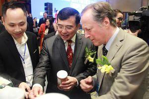 Việt Nam - Châu Âu: Đẩy mạnh giao thương, tăng cường hợp tác kinh tế trong năm 2019