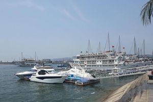 Du khách người Nhật trượt chân ngã tử vong tại cảng Tuần Châu