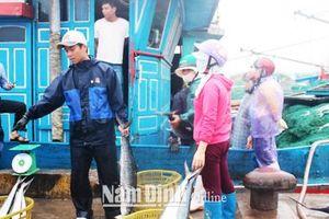 Bất cập hệ thống hạ tầng cảng cá tại Nam Định