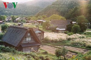 Thăm ngôi làng Shirakawa-go đẹp như cổ tích của xứ sở Phù Tang