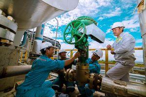 Đạm Cà Mau đầu tư dự án cung cấp khí