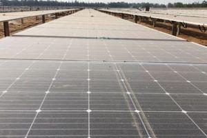 Quảng Ngãi: Dự án điện mặt trời đầu tiên 'bỏ của chạy lấy người'?