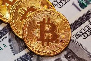 Bitcoin sẽ chạm mức mức 1.500 USD hay 6.500 USD?