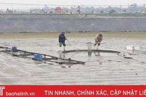 Hơn 80% diện tích nuôi tôm ở Hà Tĩnh hoàn tất cải tạo ao đầm