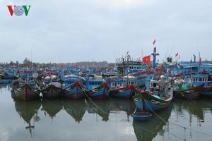 Quảng Ngãi chấm dứt tình trạng khai thác thủy sản bất hợp pháp