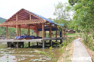 Khu nghỉ dưỡng xây dựng trái phép giữa rừng phòng hộ ở Quảng Nam: Bao giờ tháo dỡ?