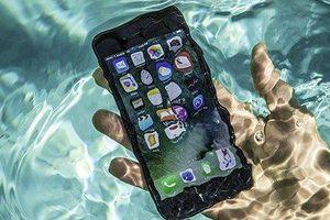iPhone 2019 vẫn hoạt động tốt ngay cả khi dưới nước?