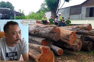 Khởi tố 24 bị can, thu giữ hơn 600 m3 gỗ bất hợp pháp