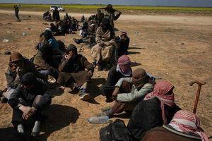 Thêm 500 phần tử IS tiếp tục đầu hàng tại Syria