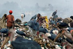 'Ngập' trong chai nhựa và thiếu luật pháp, Kenya phải đương đầu với tái chế