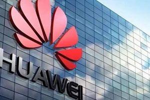 Tập đoàn Huawei chính thức khởi kiện Chính phủ Mỹ