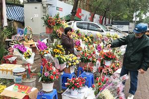 Hoa tràn vỉa hè Hà Nội trong ngày 8-3
