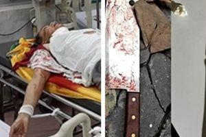Nghi phạm tử vong, đình chỉ vụ án thầy bói truy sát hàng xóm ở Nam Định