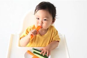 Những điều cha mẹ cần biết khi tập cho trẻ ăn dặm tự chỉ huy (BLW)