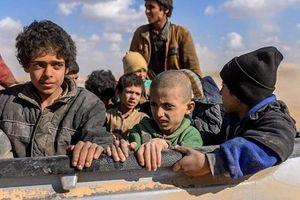 Syria tấn công thành trì cuối cùng của IS, hàng nghìn người tháo chạy