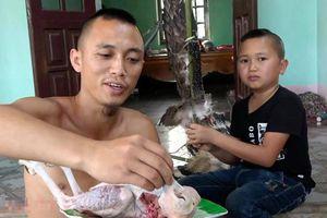 Vụ làm thịt chim quý: Anh em 'Tam Mao' có thể bị phạt 1,5 triệu đồng