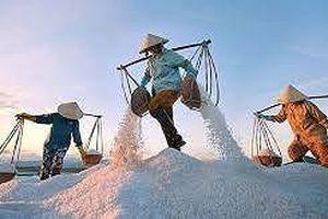 Năm 2019 nhập khẩu 110.000 tấn muối